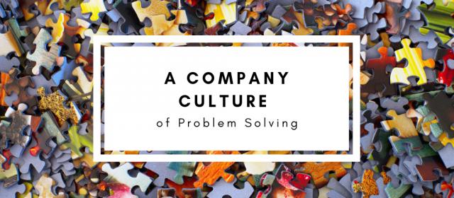 A Company Culture of Problem Solving